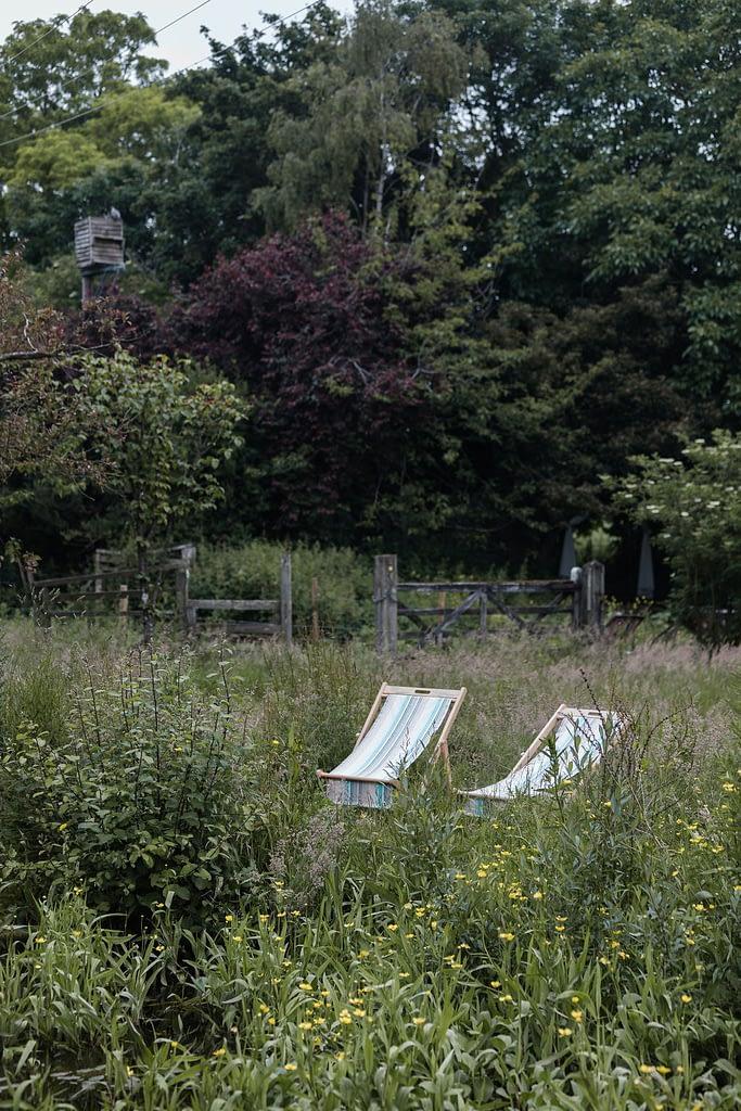 2 sun loungers in the green meadow