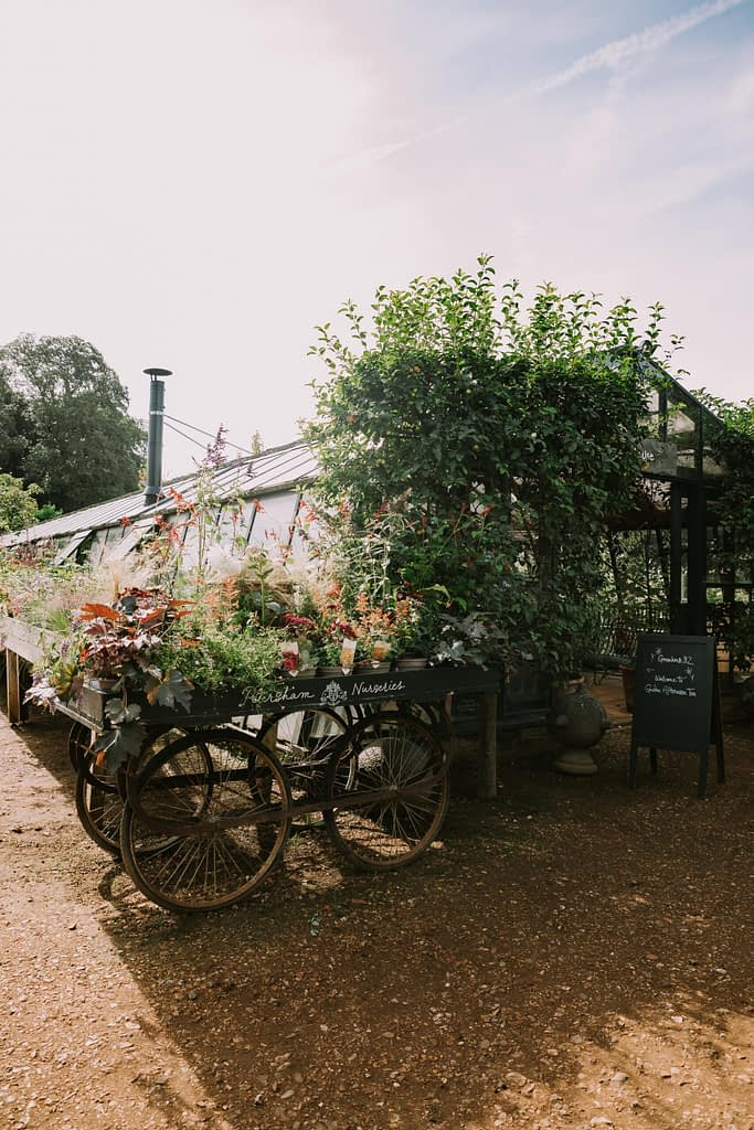 Cart with plants and greenhouse in background