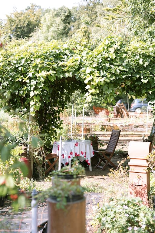 table of a cafe under grapevines