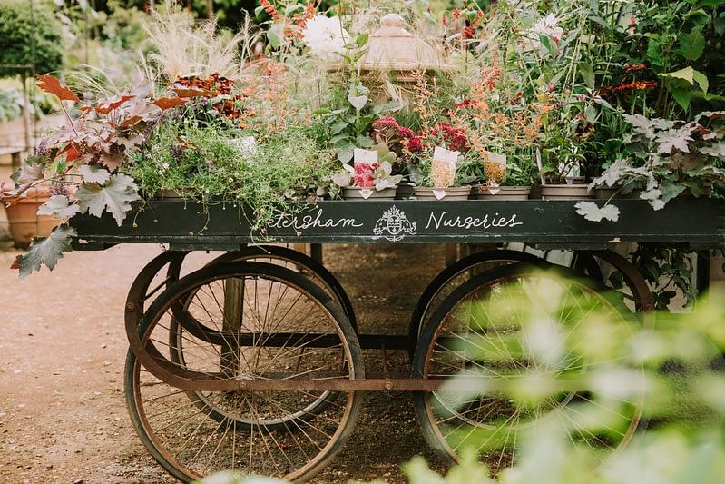 garden plants karts with Petersham nurseries written
