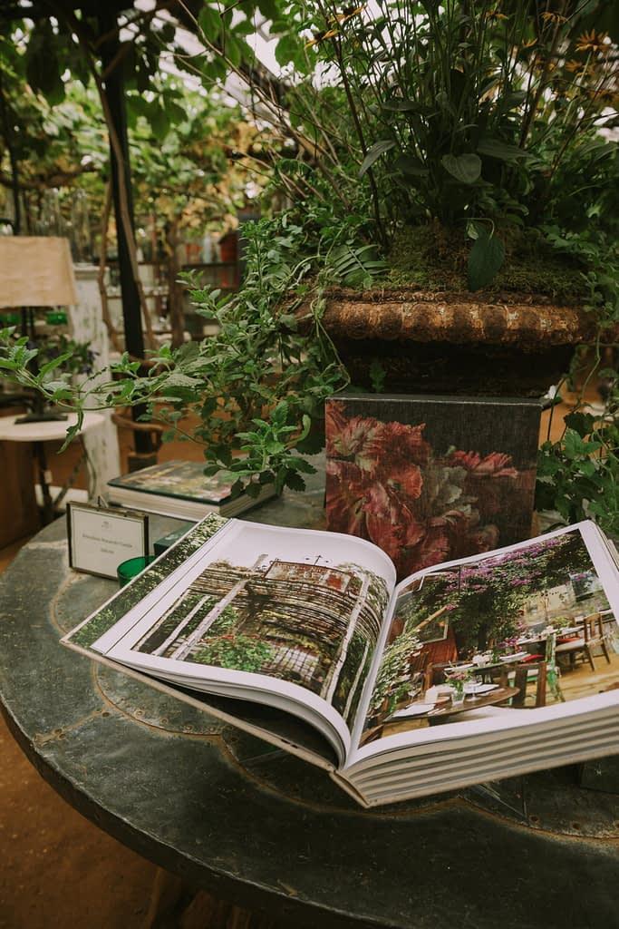 Open book on round table surrounded by green plants