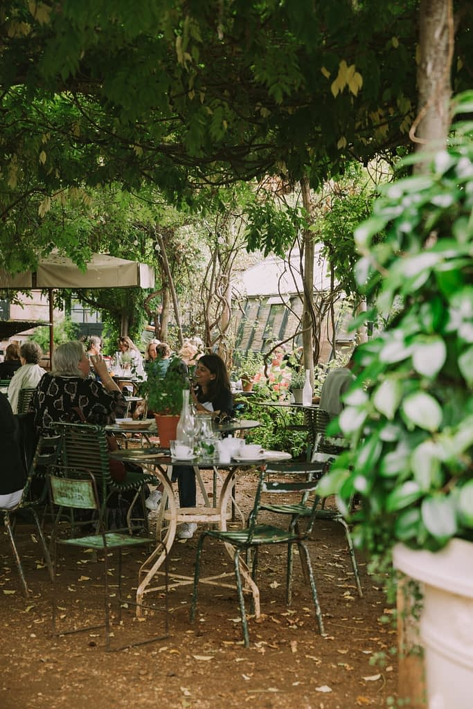 Outdoor seating and dining area under green plant pergola